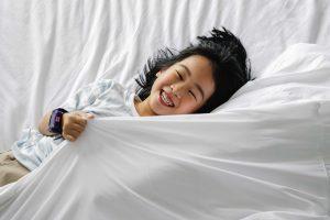 床單, 床單 推介, 床單 推薦 香港, 床單 針 數, 床單 推薦